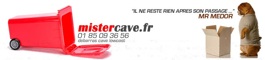 services caves r novation et nettoyage mistercave fr. Black Bedroom Furniture Sets. Home Design Ideas