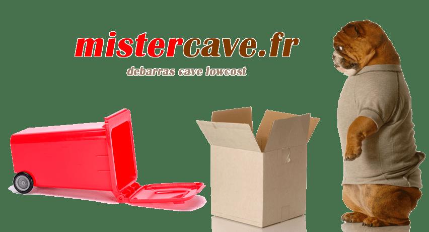 devis débarras caves paris - devis gratuit